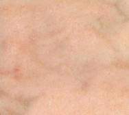 Rosa portogallo